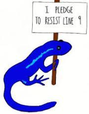Lizard - I pledge to resist Line 9
